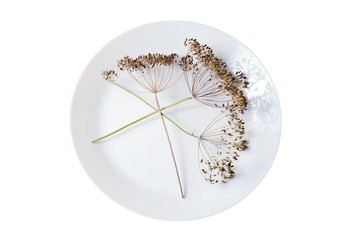 dill on white plate