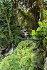 river landscape in temple Gunung Kawi