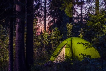 Wall Mural - Camping in a Forest