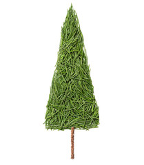 Silhouette of Christmas fir tree made of pine needles on a white background, top view