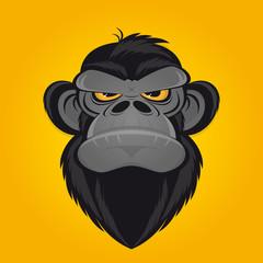 affe böse wild schimpanse