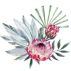 Vector tropical protea composition