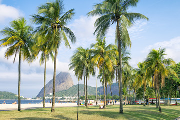 Scenic view of Flamengo Beach with palm trees in front of Sugarloaf Mountain in Rio de Janeiro, Brazil