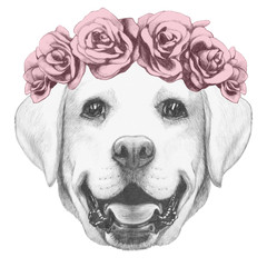 Portrait of Labrador Dog with floral head wreath. Hand drawn illustration.