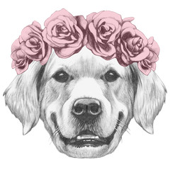 Portrait of Golden Retriever with floral head wreath. Hand drawn illustration.