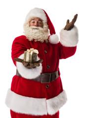 Santa Claus Portrait
