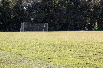 Soccer field with background of a soccer goal and trees.