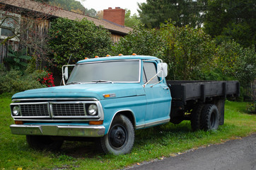 Blue Truck in grass