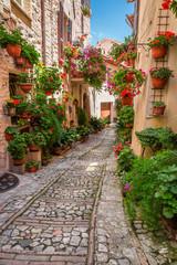 Obraz Malownicza uliczka w małym miasteczku we Włoszech w słoneczny dzień, Umbria - fototapety do salonu