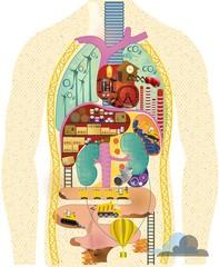 Anatomical cartoon map