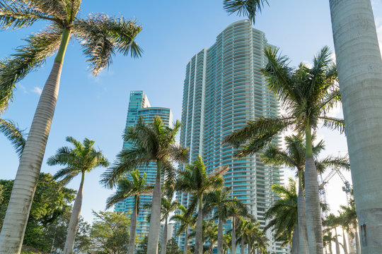 Miami High Rise Condominiums