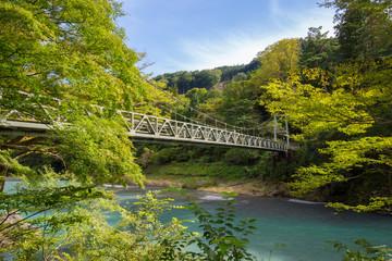 御岳渓谷 楓橋(多摩川)