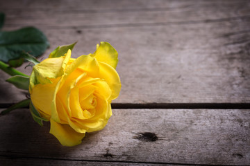 Background with yellow rose on wooden table