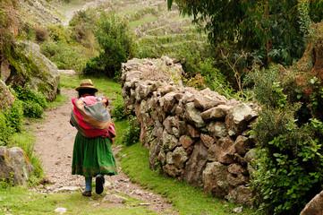 Peru, Old incan road in the canyon Cotahuasi