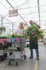 Shop assistant helping a customer in garden centre, Augsburg, Bavaria, Germany