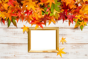 Autumn leaves and golden frame for picture or text