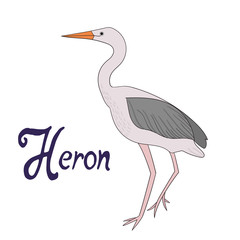 Bird heron vector illustration