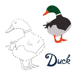 Educational game connect dots to draw duck bird