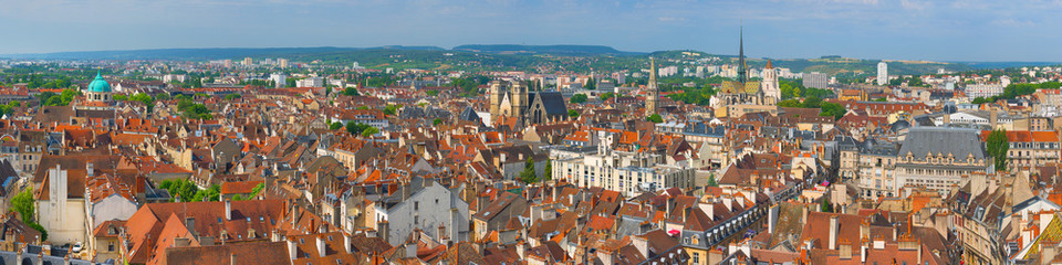 Dijon in a summer day