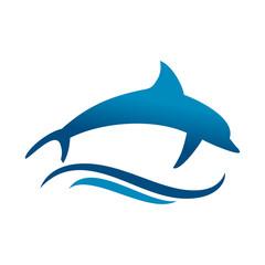 Dolphin Jumping Sea