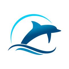 Dolphin Marine Jump