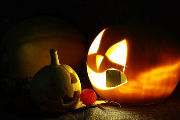 Halloween pumpkin leaves fall