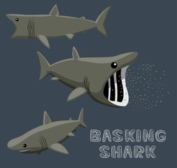Basking Shark Cartoon Vector Illustration