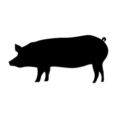 Silhouette of the pig. Vector black illustration