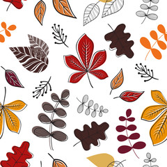 Seamless pattern. Vector pattern with fall leaves on white background.