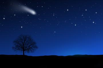 Nachthimmel mit Baum
