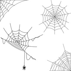 Cartoon spider web collection set
