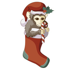 Monkey in Christmas stocking with a candy cane