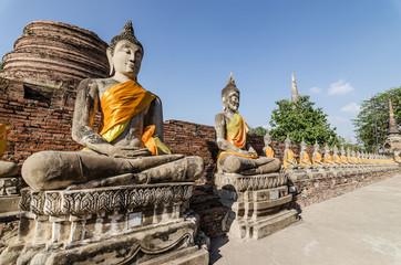 Aligned buddha statues at Wat Yai Chaimongkol Ayutthaya, Thailan