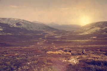 Mongolia Nature Travel Destination Attractive Concept