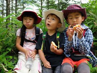 ハイキングを楽しむ三兄弟
