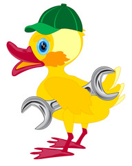 Duckling in cap and with key