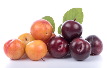 Ripe yellow and cherry plums