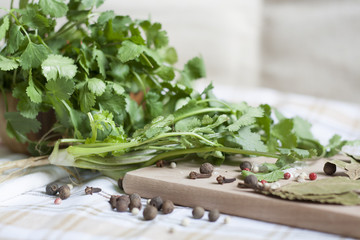 Green coriander on a wooden board with spices, close-up