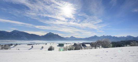 Wall Mural - Panorama Landschaft in Bayern im Allgäu mit Blick auf die Berge der Alpen und dem Forggensee bei Füssen im Winter
