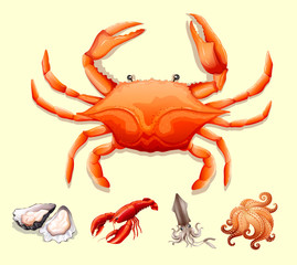 Different kind of seafood