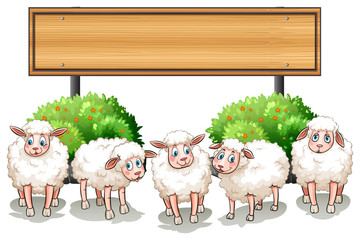 Sheeps and wooden sign