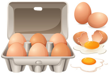 Raw chicken eggs and yolk