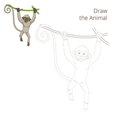 Draw the animal monkey educational game vector