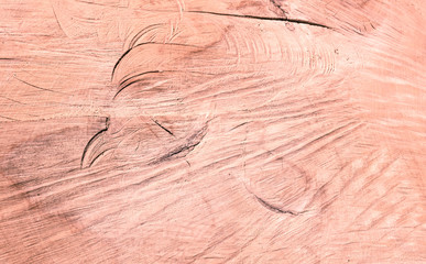 Vintage Wood Striped Texture - Abstract Background - Hardwood Concept -  Vintage Desatured Filter