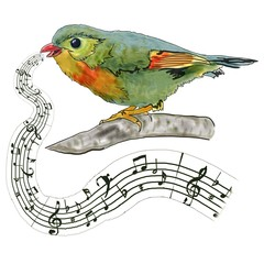 bird on branch singing a song, notes