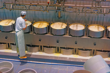 Cheese-maker concentrated on the process of production of Gruyer