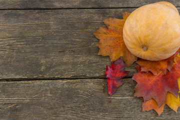 Oak tree leaf pile with pumpkin on a rustic wooden background. Fall series.