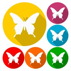 Butterfly icons set with long shadow