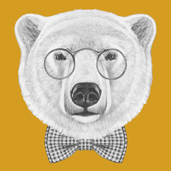 Portrait of Polar Bear with glasses and bow tie. Hand drawn illustration.