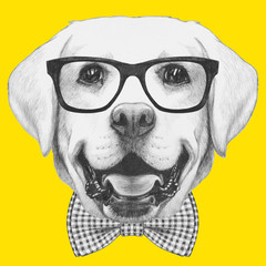 Portrait of Labrador with glasses and bow tie. Hand drawn illustration.